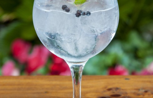 Gin tonics refrescantes