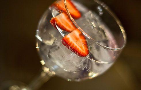 Gin tonics con frutas