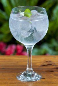 gin-tonic Gin Raw