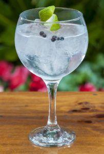 gin-tonic Seagram's